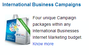 International Business Campaigns